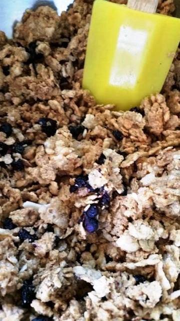 Blueberry Burst Crunch Bars