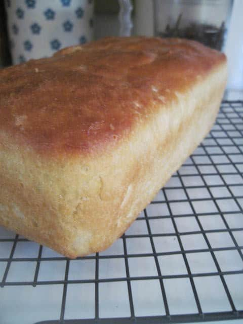 English Muffin Bread & Video