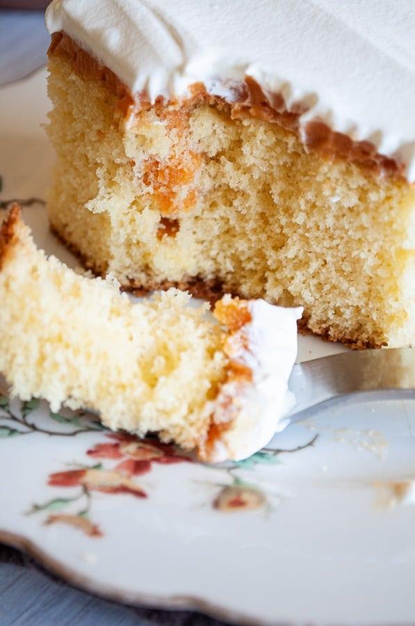 Pumpkin Cheesecake Jello Pudding Poke Cake