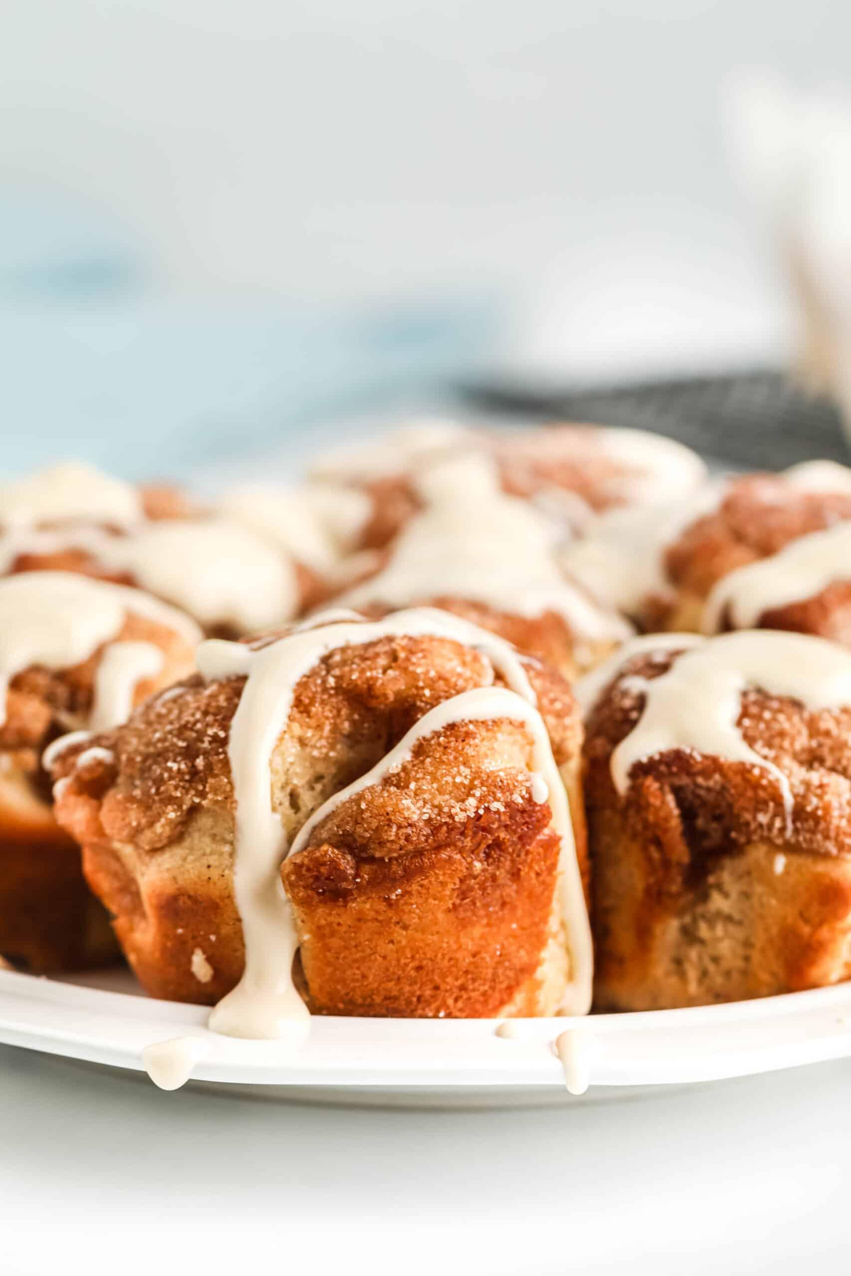 Jumbo Snickerdoodle Crumble Muffins-21